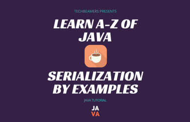 Learn Java Serialization By Examples.