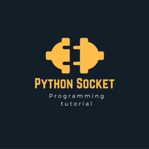 Python Socket Programming Explained in a NutShell