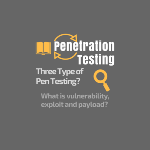 Penetration Testing or Pen Testing