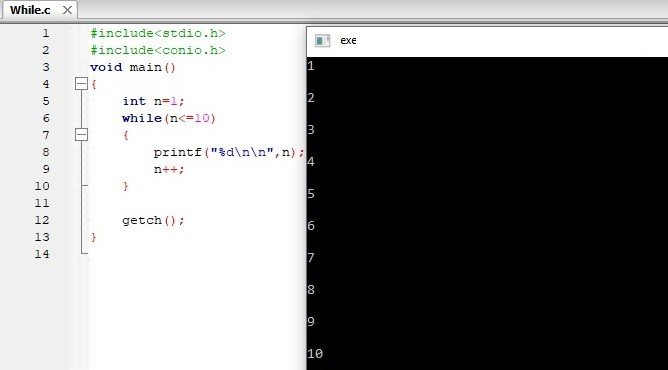C While Loop Program Output